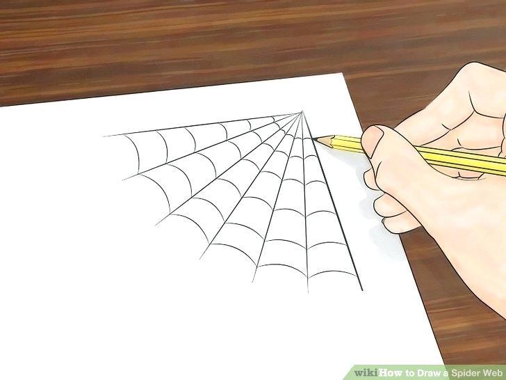 728x546 How To Draw A Spider Web Abundantlifestyle.club