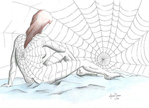 300x218 Spider Web Drawings