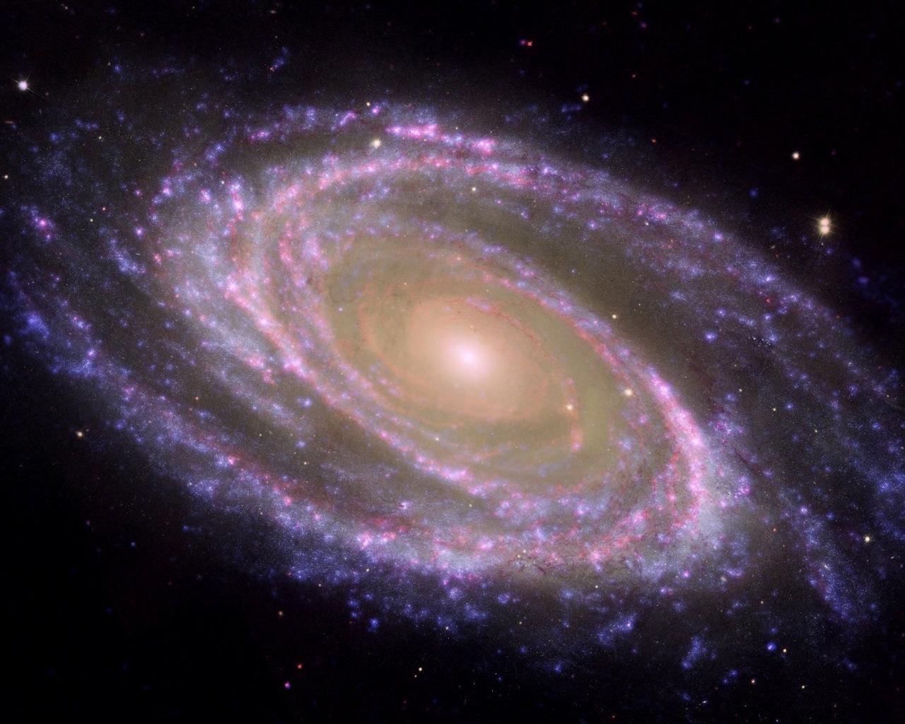 1280x1024 Spiral Galaxy M81