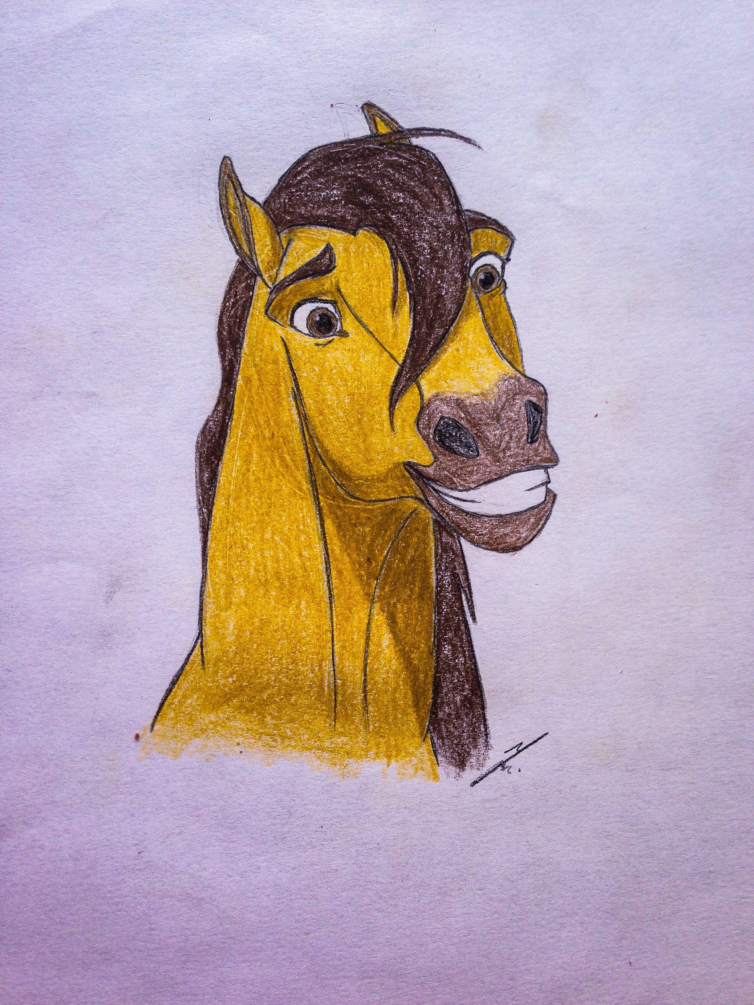 2448x3264 Spirit The Stallion Of Cimarron Spirit Drawings