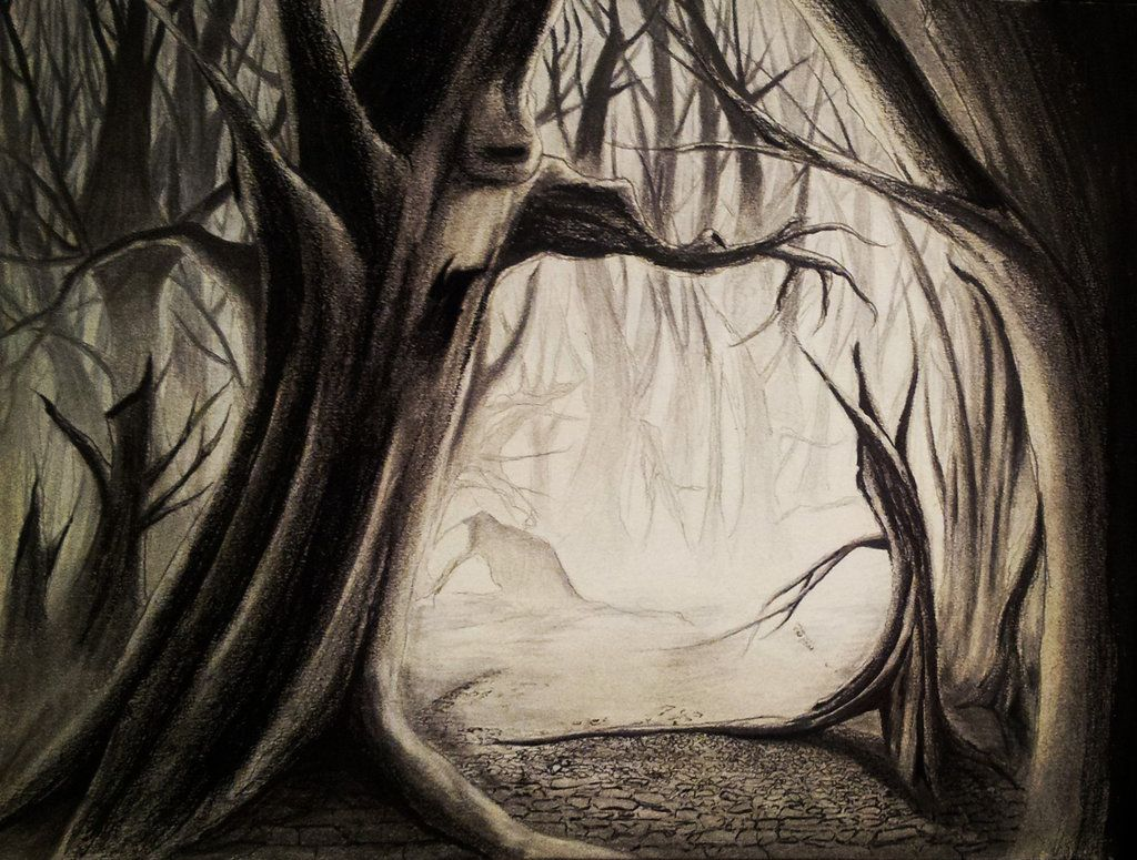 1024x775 Spooky Forest By Visualiart D6sk79y.jpg Creepy Forest