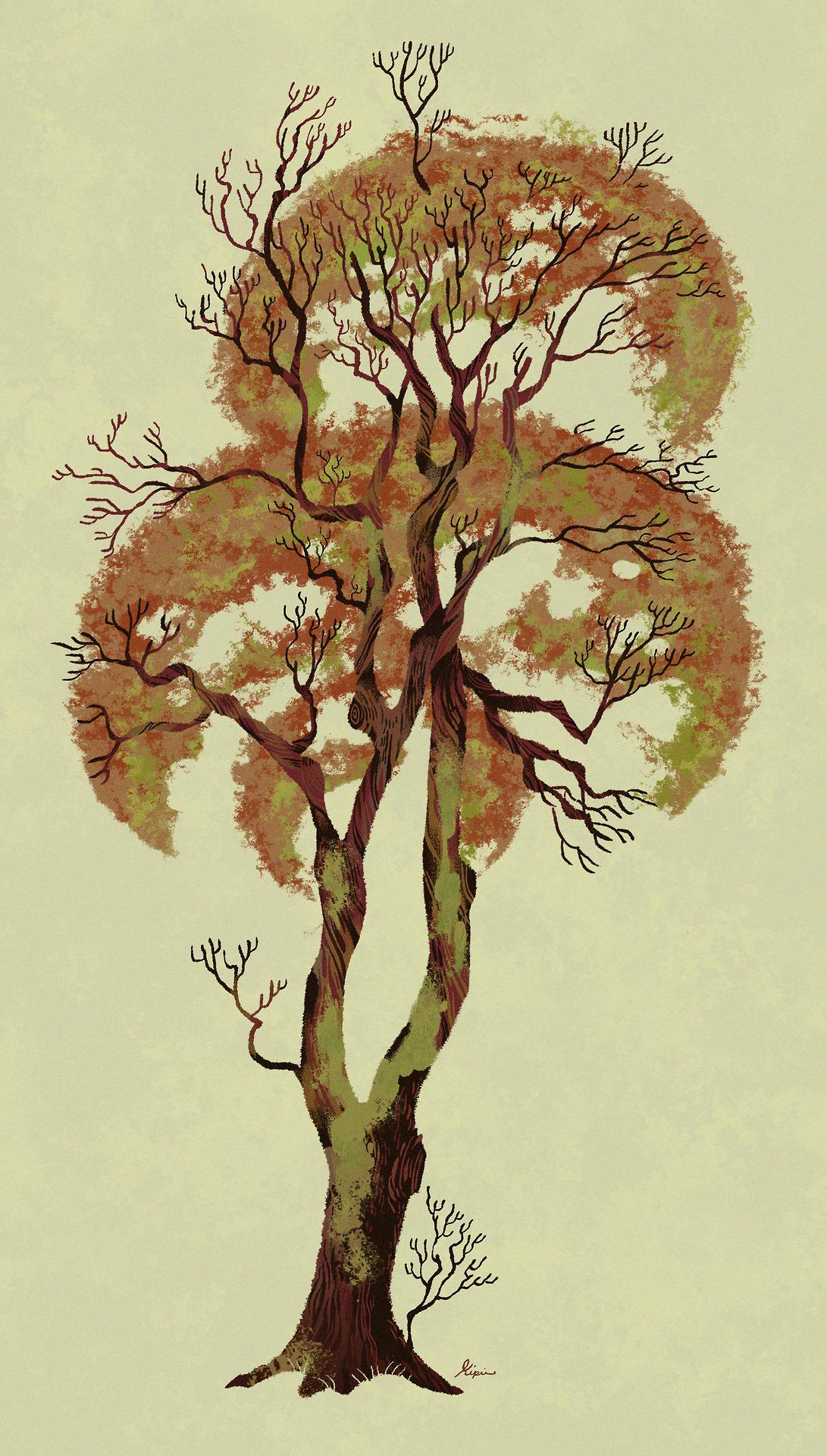 1091x1920 Sara Kipin's Illustration Blog Spooky Tree Outside My Parents House