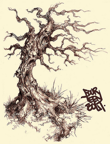382x500 Spooky Tree A Drawing I Did About A Year Ago. 14bolt