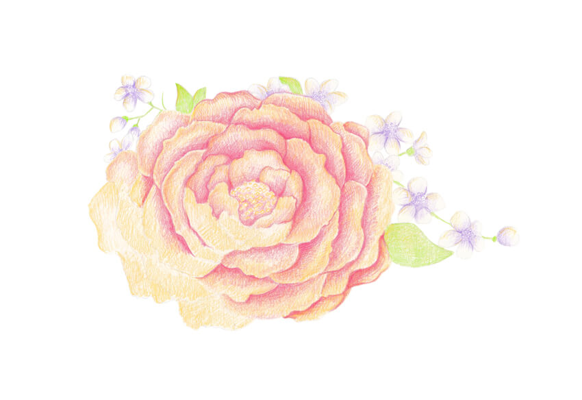 Spring flowers drawing at getdrawings free for personal use 850x584 how to draw spring flowers with colored pencils mightylinksfo