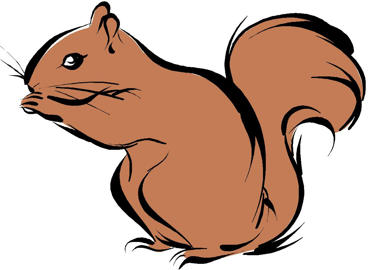 squirrel images drawing at getdrawings com free for steampunk clipart evening steampunk clip art free