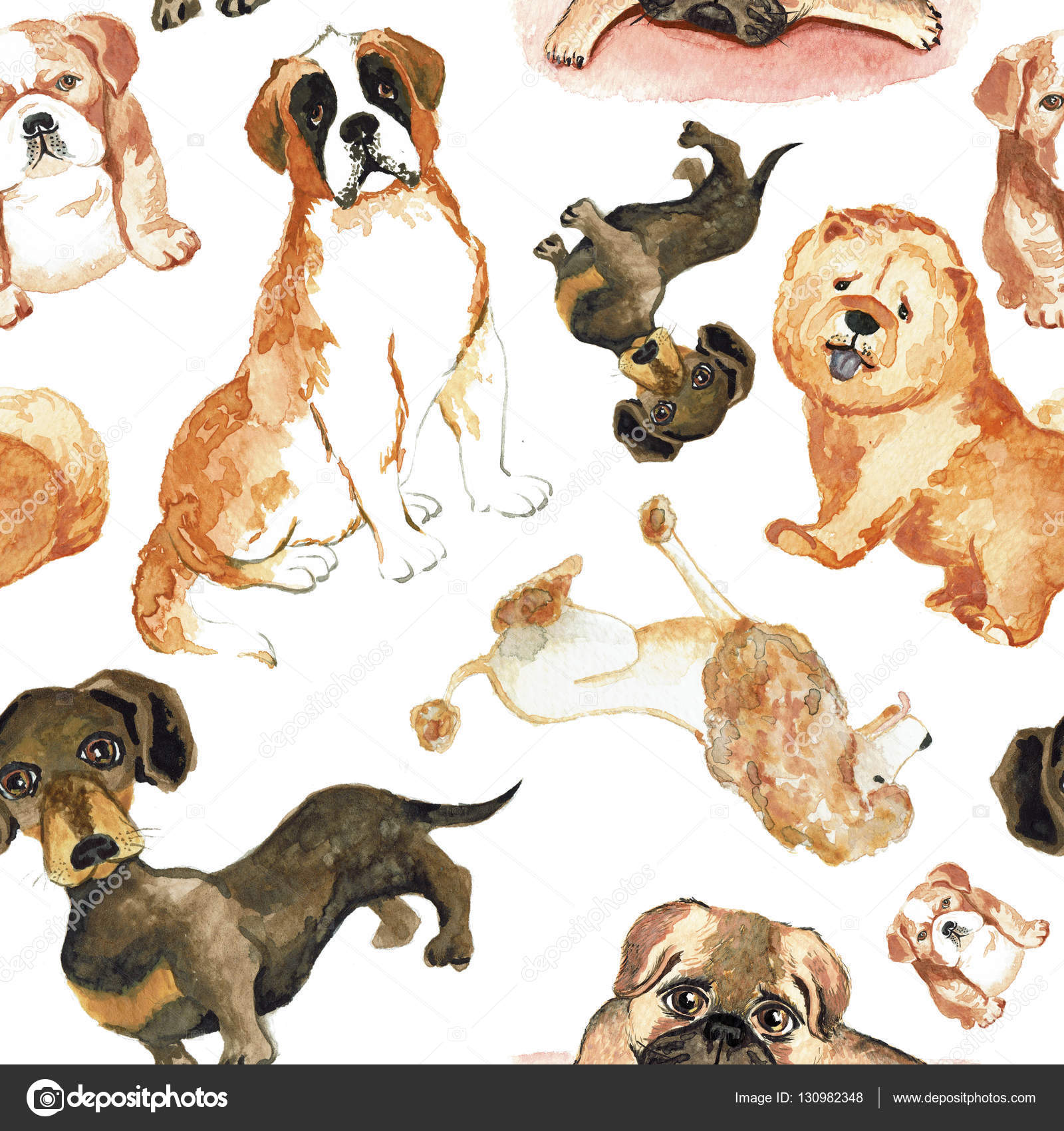 The Best Free Chow Drawing Images Download From 21 Free Drawings