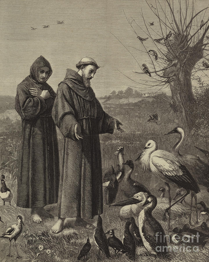 720x900 St Francis Preaches To The Birds Drawing By Henry Stacey Marks