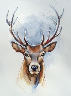 236x317 Drawing After Hunting