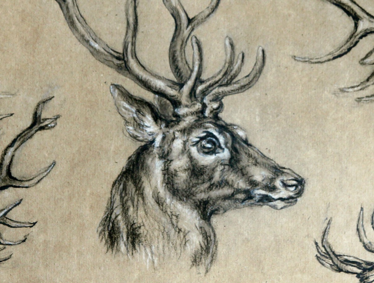 1190x900 Stag Head Drawing