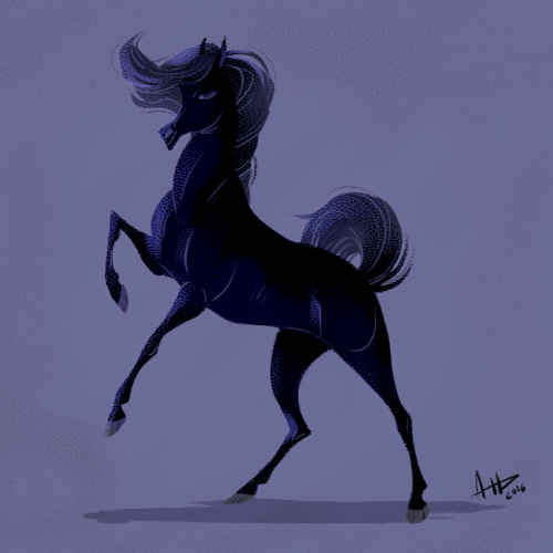 500x500 Dhd 071 Young Black Stallion Daily Horse Drawings