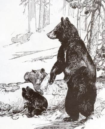 350x429 Yosemite Bears