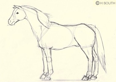 380x270 Drawing A Horse Is Easy With This Step By Step Guide Horse Drawn
