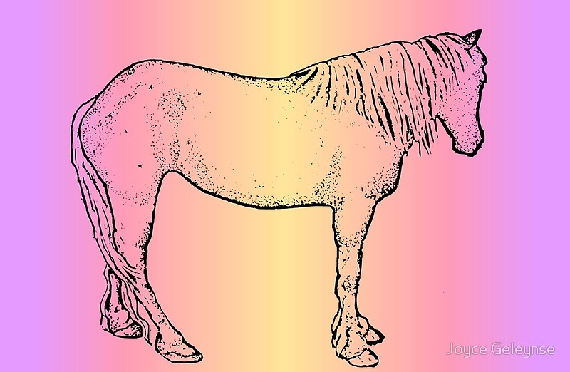 800x522 Horse Drawing With Colored Background, Standing Horse Laptop