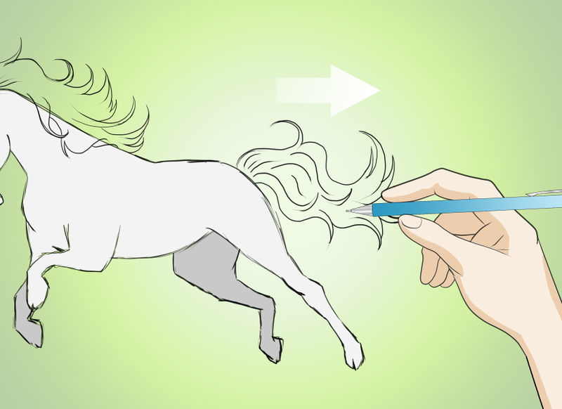 800x582 How To Add Details To A Horse Drawing Vripmaster