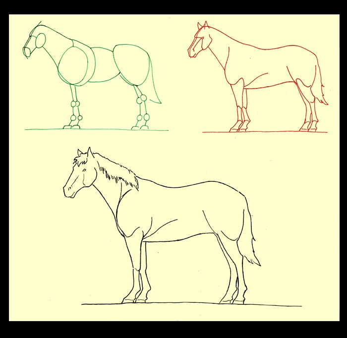 700x682 Most Beautiful Drawing In The World How To Draw A Horse Standing