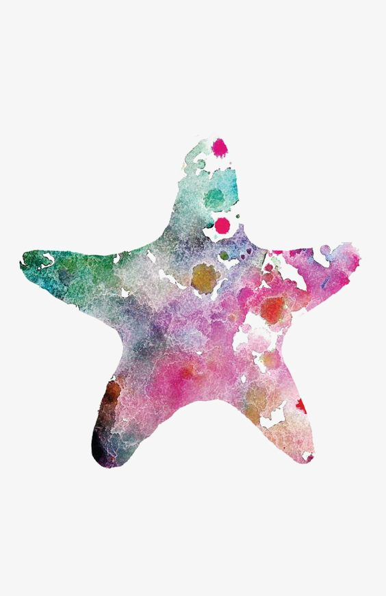 564x871 Starfish, Hand Painted Starfish, Drawing Starfish, Ocean Png Image
