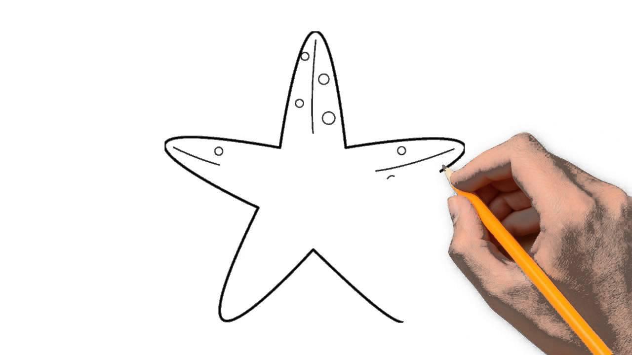 1280x720 Starfish Animals Pencil To Draw Step By Step