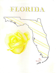 231x300 State Of Florida Drawing By Dusty Reed