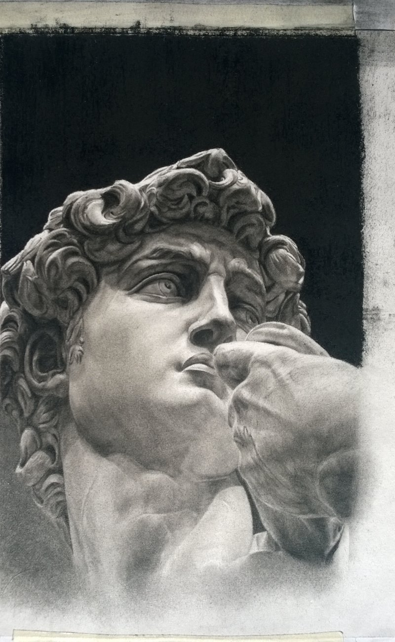 800x1301 David Statue Drawing By Artist Shobha Sharma Charcoal Drawings