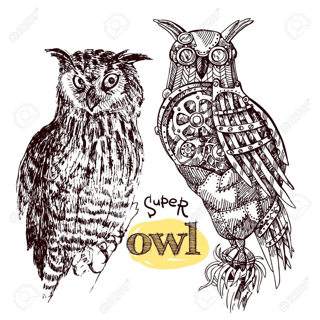 1299x1300 Vector Hand Drawn Mechanical Owls. Mechanical Sketch Animal