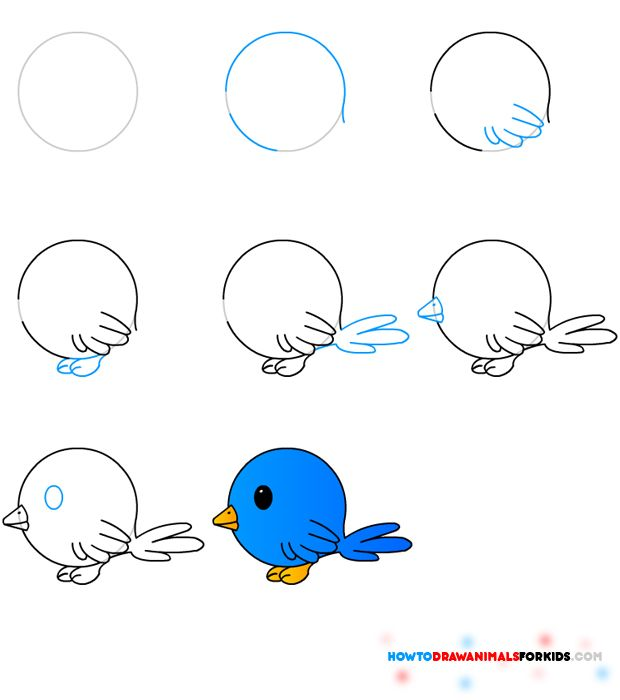 620x700 How To Draw A Bird Step By Step Easy With Pictures Bird, Draw