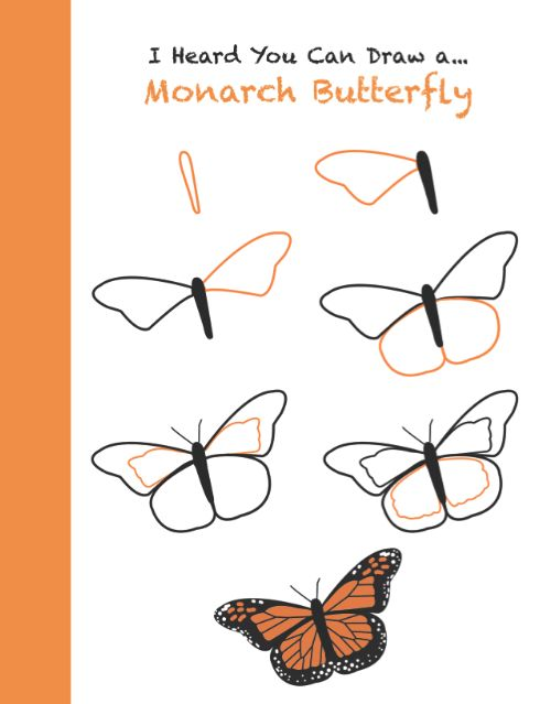 490x639 how to draw a monarch butterfly step by step use in science or