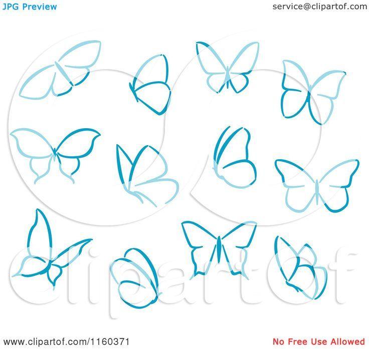 Step By Step Butterfly Drawing At Getdrawings Com Free For