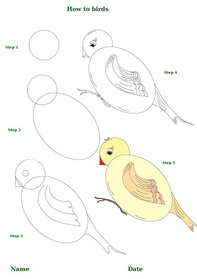 636x900 how to draw birds