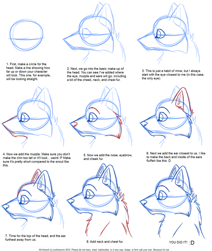 676x800 how to draw a wolf