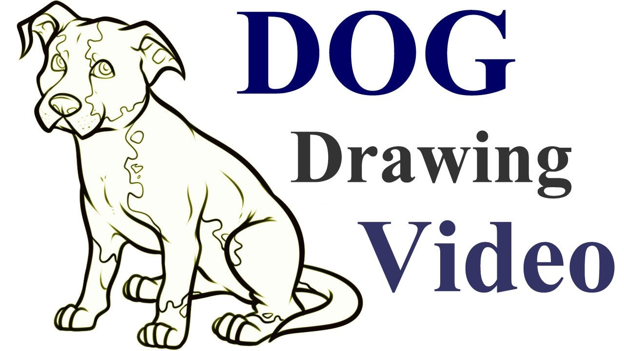 Step By Step Drawing Dogs at GetDrawings.com | Free for personal use ...