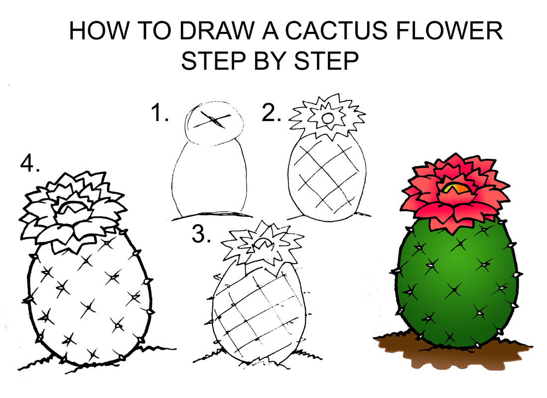1098x799 Shocking Ideas How To Draw Cool Flowers Step By A Cactus Flower Drawing Realistic At Getdrawings Free For