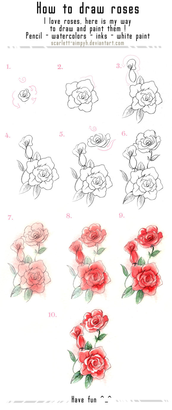 579x1378 How To Draw A Rose Flower Step By Step How To Draw Roses Step By