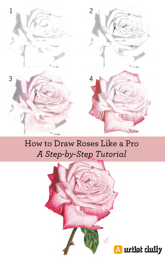 578x900 How to Draw Flowers Free Flower Drawing Guide Rose drawings