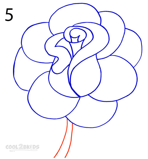 500x536 how to draw a realistic rose step by step pictures cool2bkids