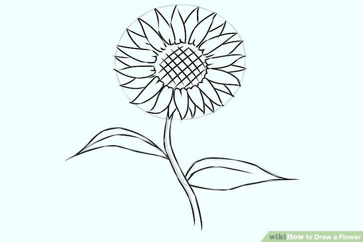 728x485 Flowers Drawing Cute Flowers Drawing Free Vector Flowers Drawings