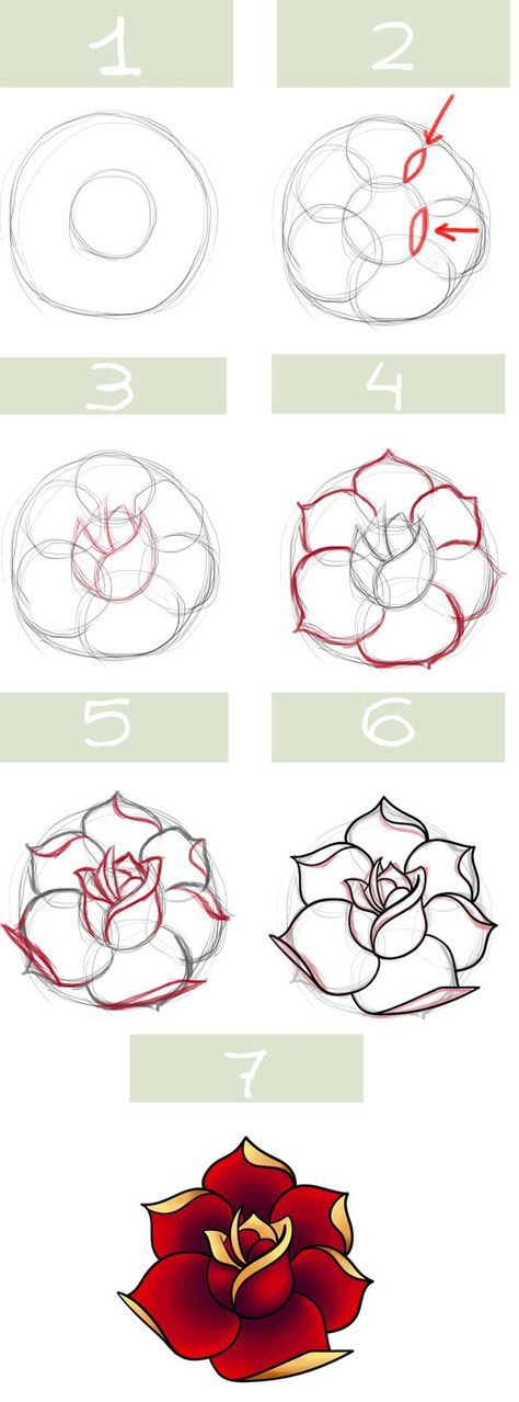 474x1279 Traditional Rose Drawing Step By Step Instruction Chart.