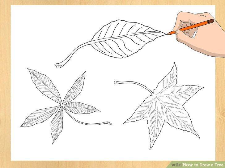 728x546 3 Ways To Draw A Tree