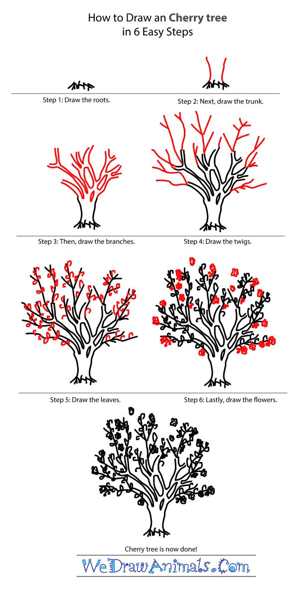 600x1197 How To Draw A Cherry Tree