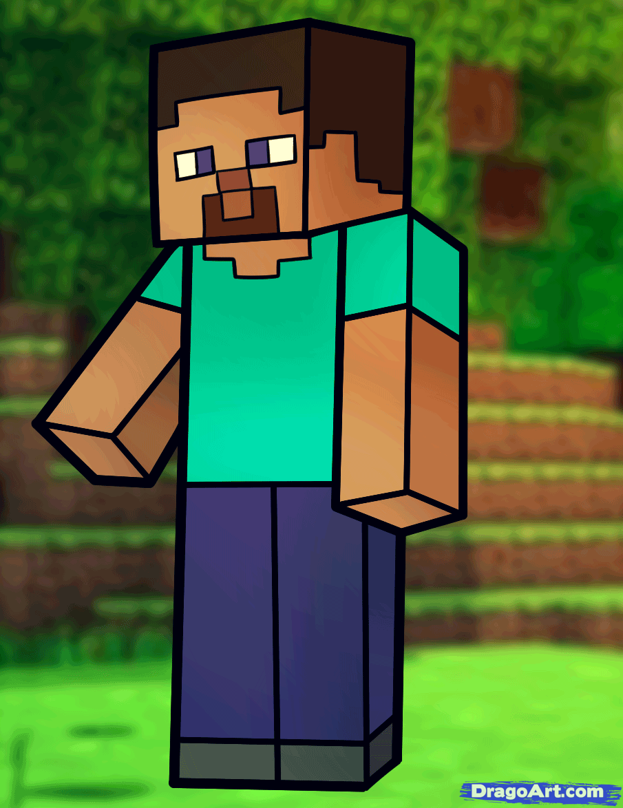 905x1174 How To Draw Steve From Minecraft, Minecraft Steve, Step By Step
