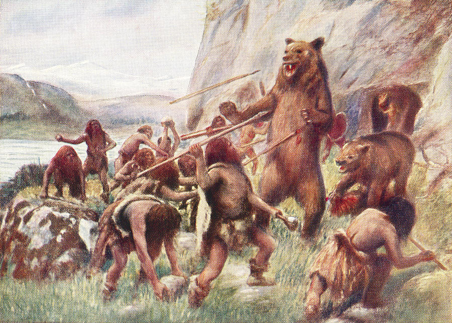 900x644 Stone Age Man Hunting Wild Bears. After Drawing By Vintage Design Pics