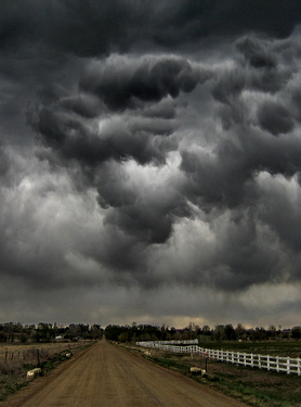 278x375 Doom Clouds Gather Over Parliamentary It Hearing