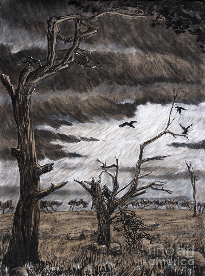 667x900 After Storm Drawing By Philip Tolok