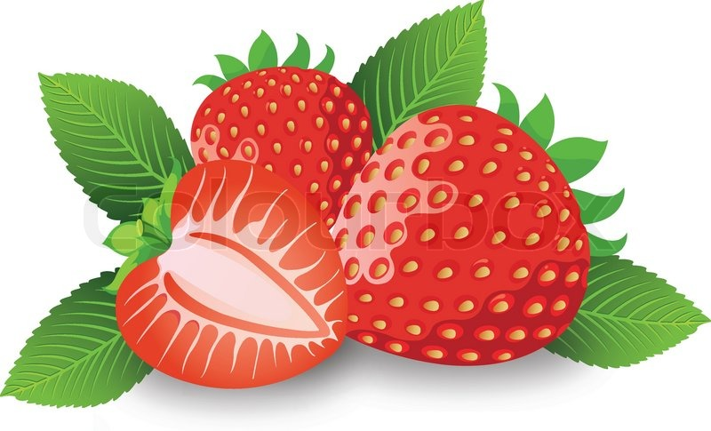 800x485 Strawberry, Illustration Stock Vector Colourbox