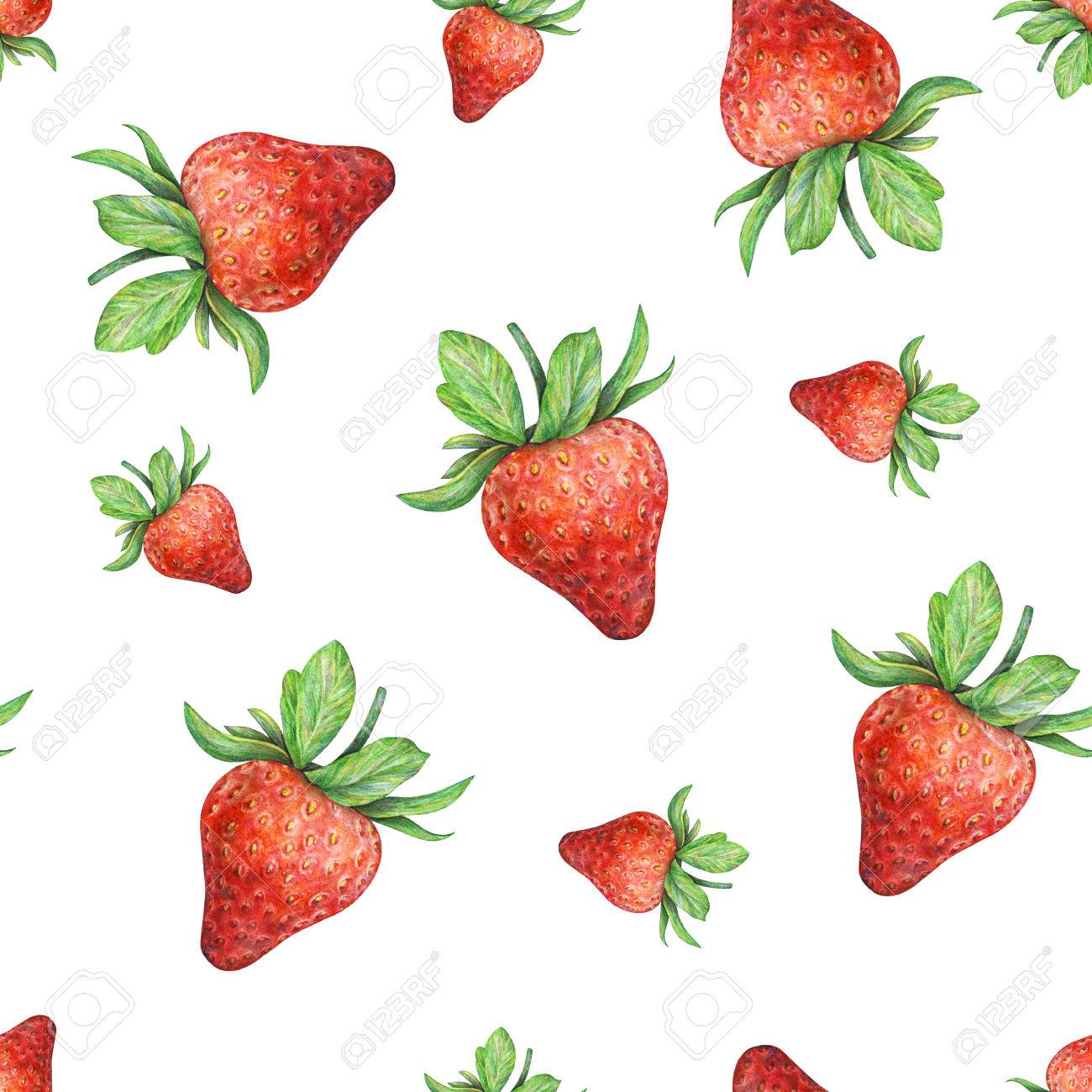 1300x1300 Strawberry On White Background. Watercolor Drawing Of Strawberry