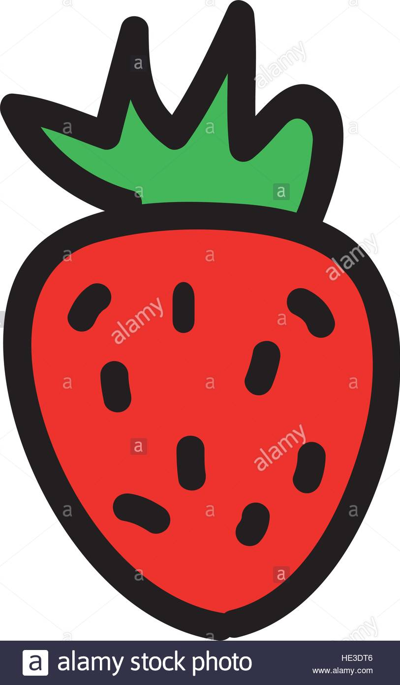 813x1390 Strawberry Fresh Fruit Drawing Icon Vector Illustration Design