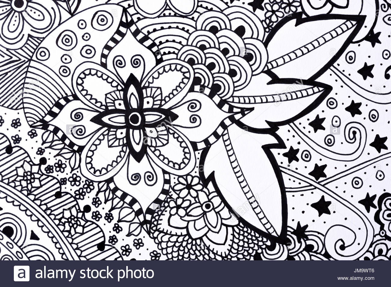1300x957 Adult Colouring Book Hand Drawn Illustration, New Stress Relieving