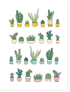 236x307 Succulents And Cacti Outline Multicolored Vector Icons Set. Modern