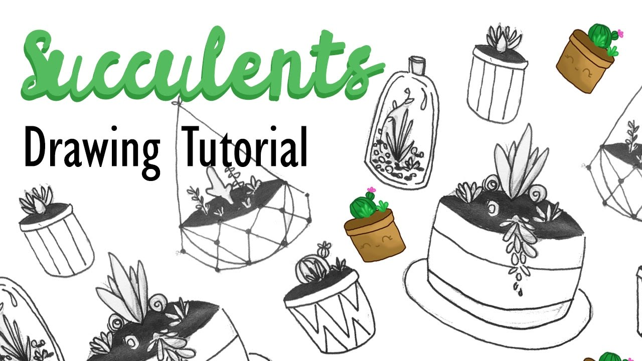 1280x720 How To Draw Succulents