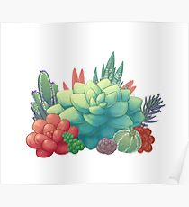 210x230 Succulents Drawing Posters Redbubble