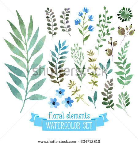 450x470 Vector Floral Set. Colorful Floral Collection With Leaves
